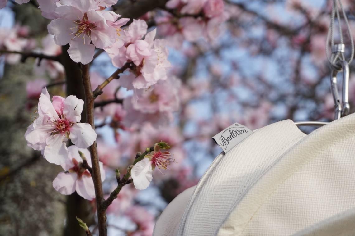 Barlooon – wetterfester Outdoor-Lampion WEISS  im blühenden Baum