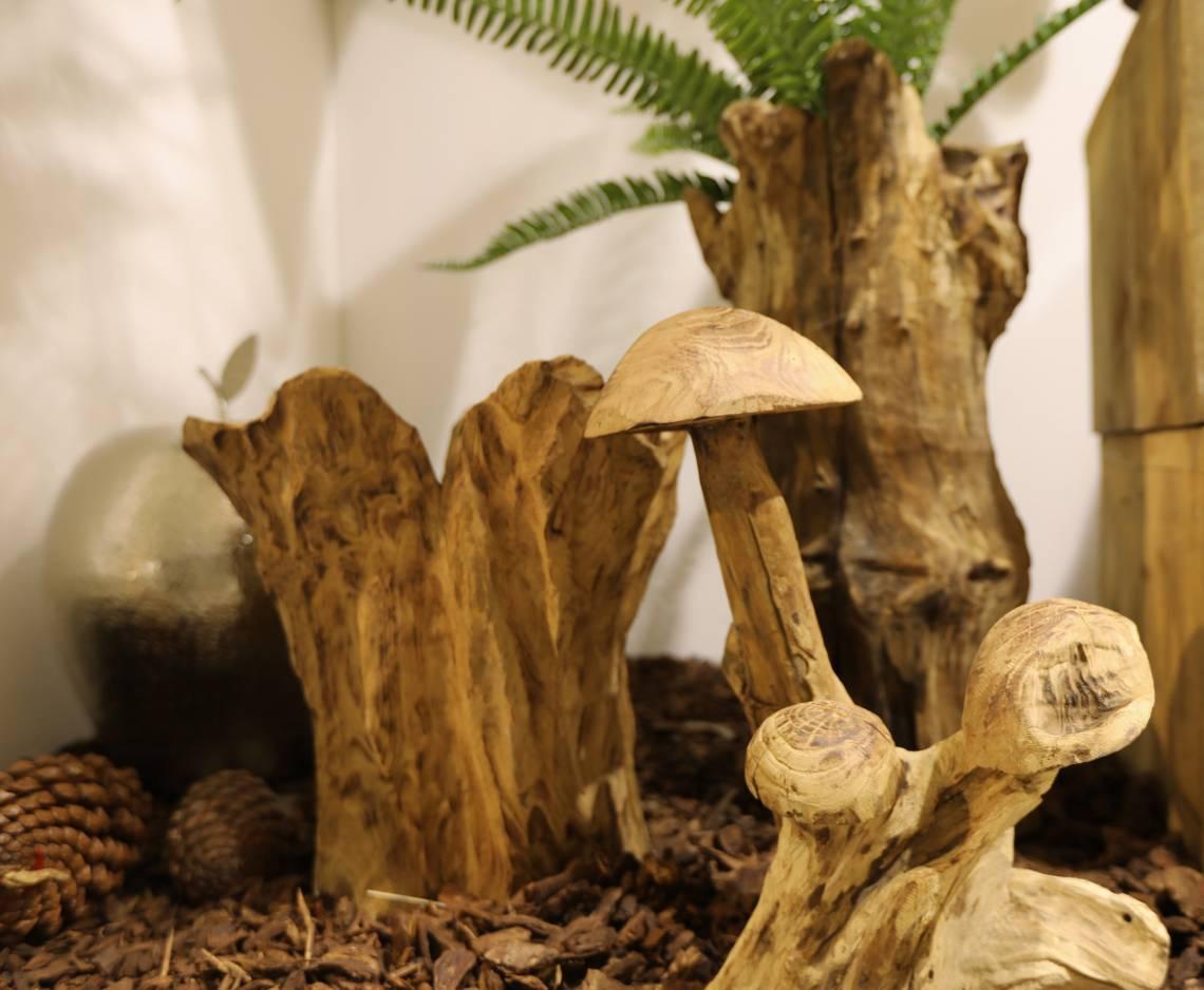 Exner-Herbstlandschaft-pilze