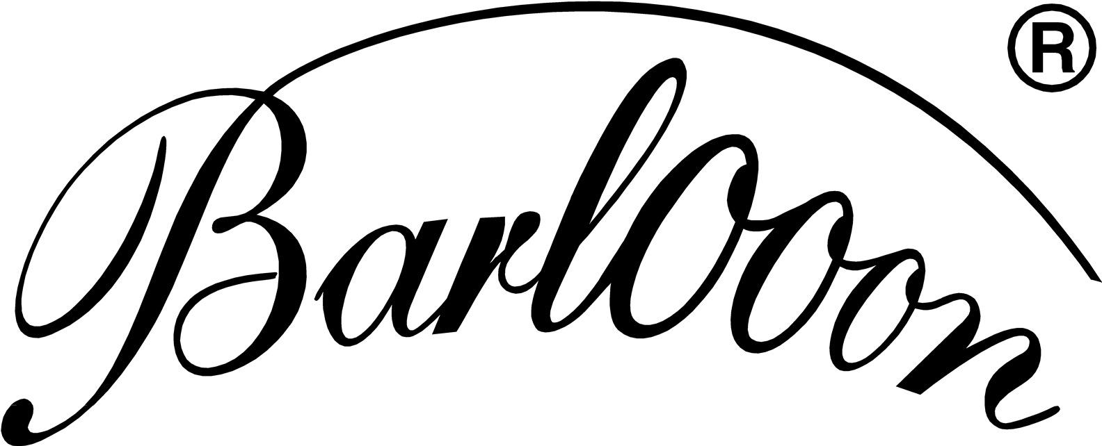 Logo Barlooon Germany
