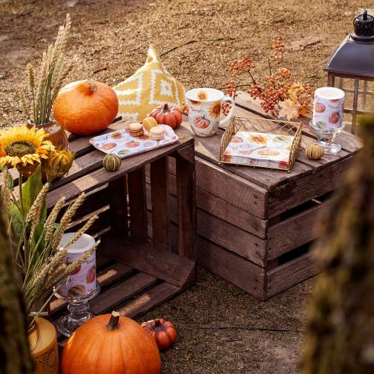 Ambiente - Pumpkins&Sunflowers - Herbstdekoration - Kürbisse