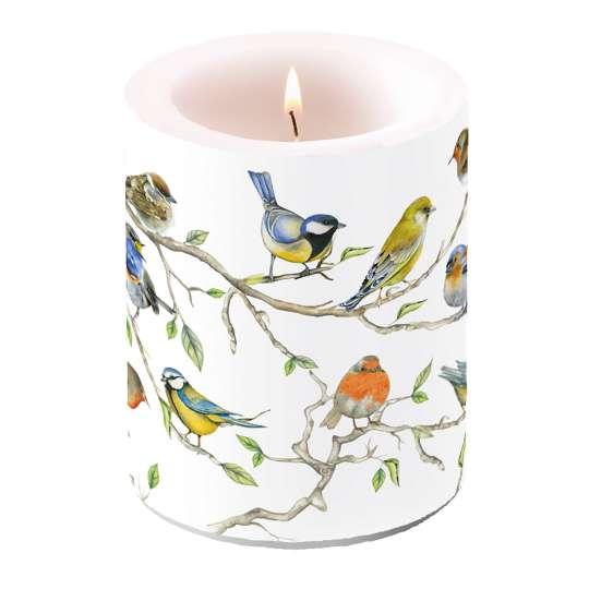 Ambiente Birds Meeting Kerze groß.jpg