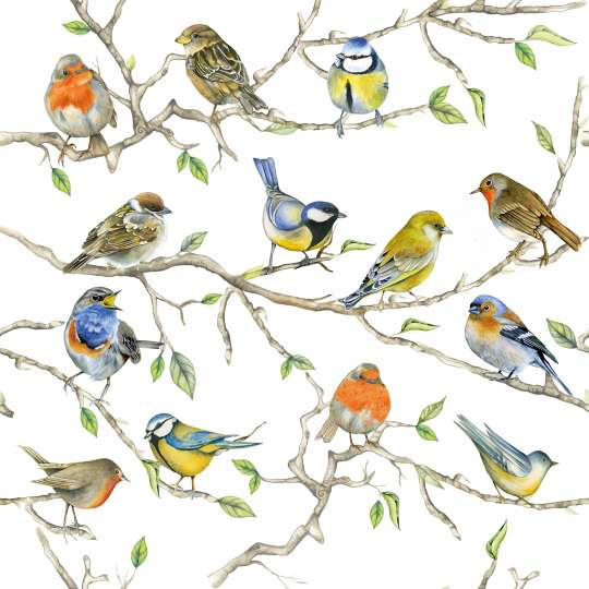 Ambiente Birds Meeting Servietten