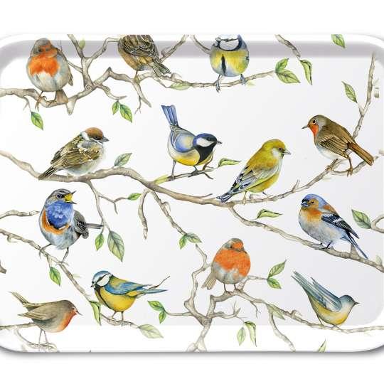 Ambiente Birds Meeting Tablett 13x21 cm