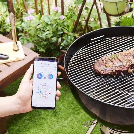 Mastrad MEATIT+ F74380 – im Steak auf dem Grill.jpg