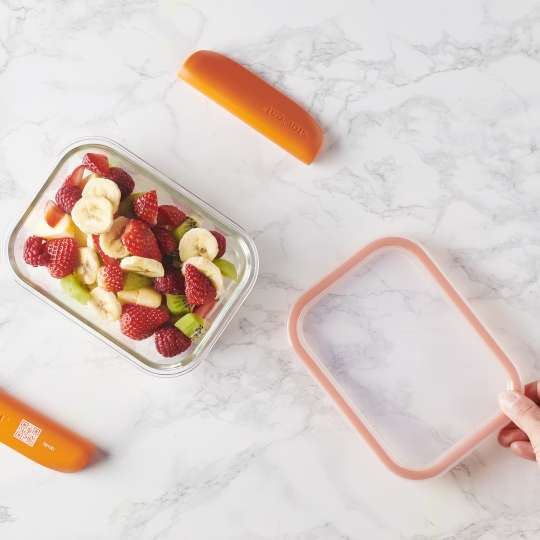 Mastrad Aufbewahrungsbox glas/orange  F93xxx in Einzelteilen