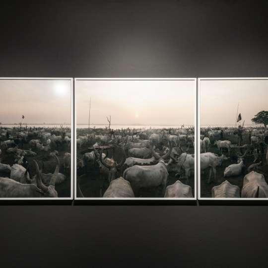 Halbe-Rahmen - Beeindruckende Panorama-Aufnahmen