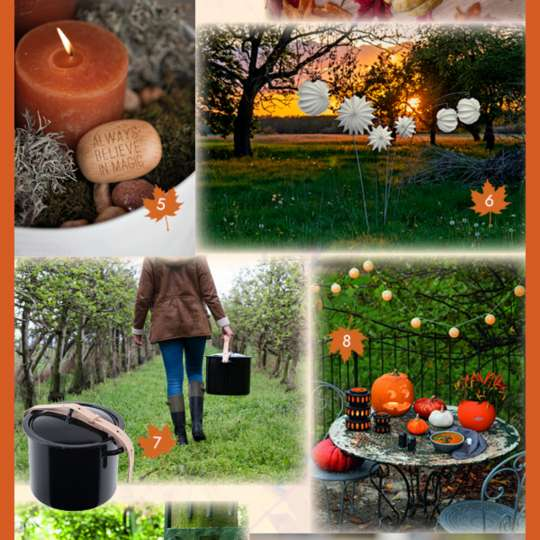 So schön ist's im Herbst! Produktvorschläge von TrendXpress