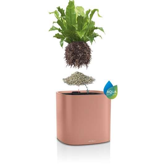 LECHUZA-PILA-Planter-35 koralle-2021