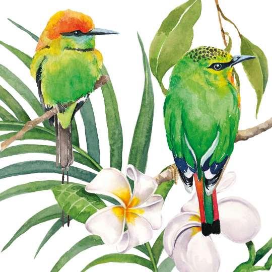 PPD-Sril-Lanka-bali-napkin-1253946