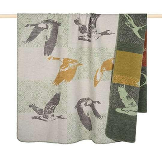 Duck Decke von pad
