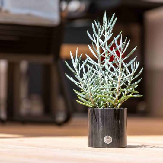 Rokstyle Pflanzentopf aus Marmor RL012