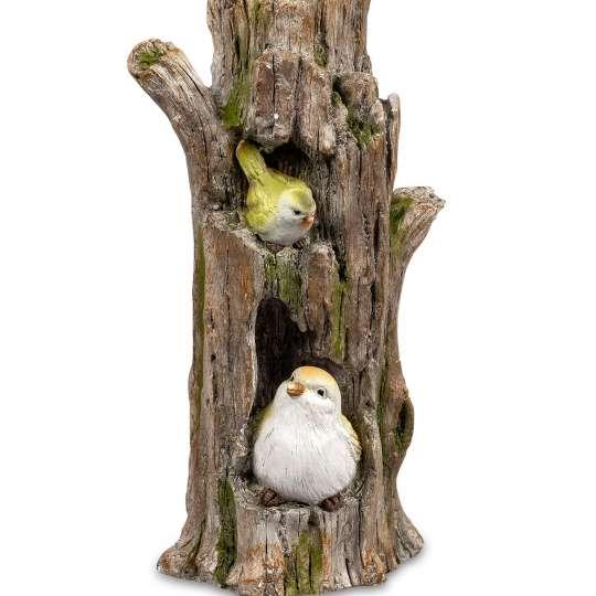 Vogelpaar im Baumstumpf