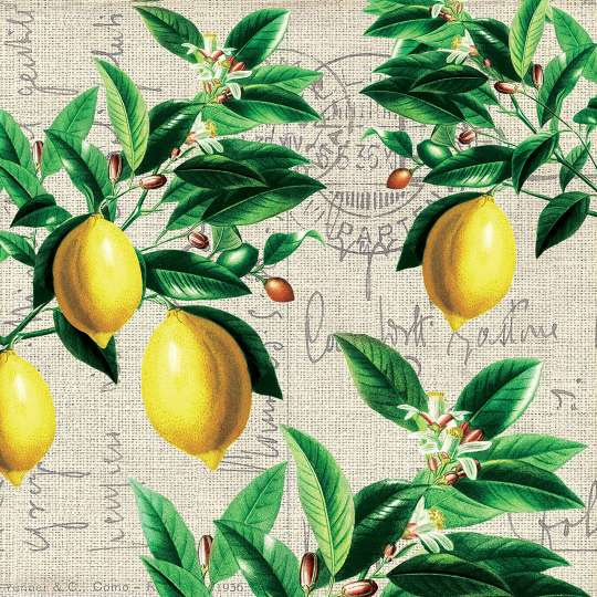 Paperproducts Design Lunchserviette Capri – 1333620