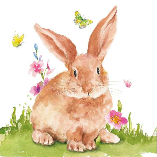 ppd - Servietten - Mr.Rabbit-1334009