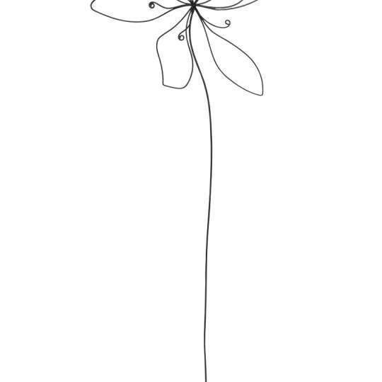 räder - Raumpoesie - Blüte aus Draht