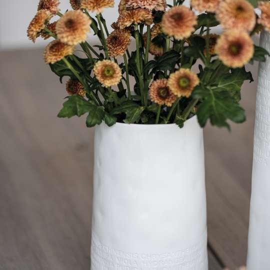 räder - Raumpoesie - Blumenvase