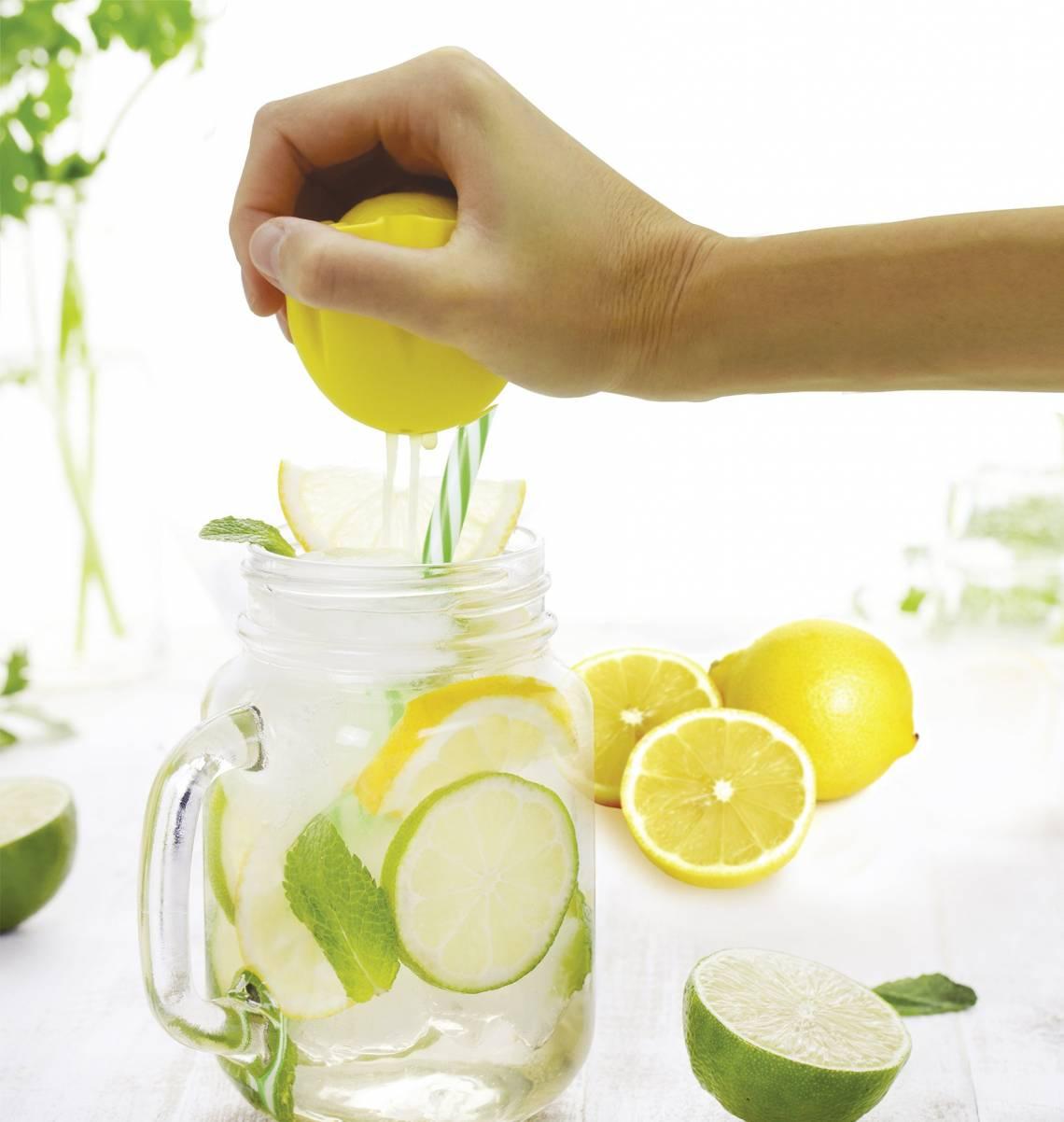 Fackelmann: Küchenhelfer rund um Zitrusfrüchte / Mood Zubereitung Zitronenlimonade, Zitronenpresse mit Halter / 42646