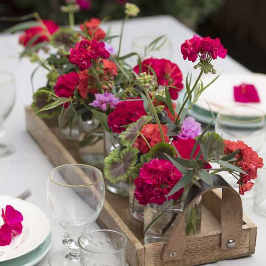 Geraniums Summer Table Decoration