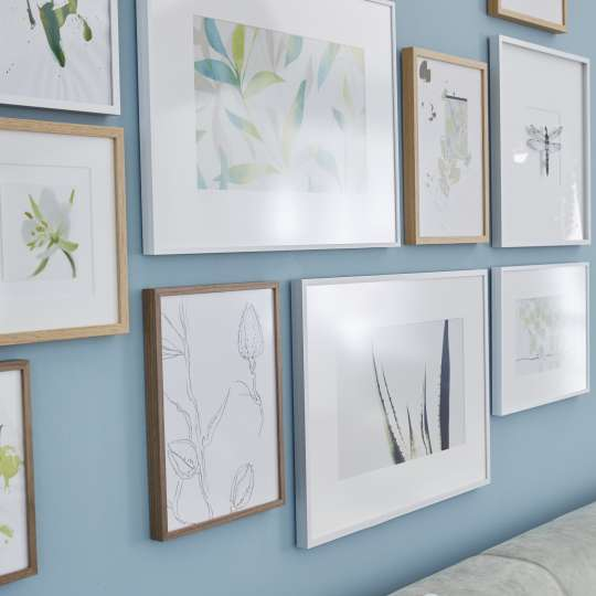 Die Rahmen wirken besonders auf einer farbigen Wand