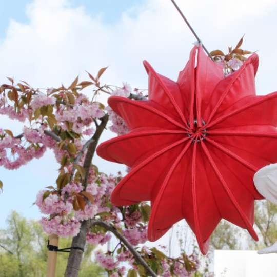 Zeit für Frühling bei barlooon - Outdoor-Lampion rot S, Mood 1