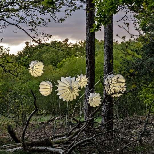 Barlooon - robuste Outdoor-Lampions, Mood Wald 1