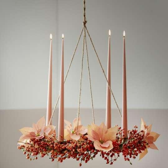 Bild 7 - Poinsettia Candy Colour Christmas