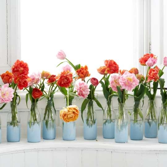 Die Tulpe in kreativen DIY Vasen