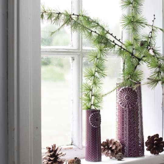 Dottir: PIPANELLA Tanne in Vase vor Fenster
