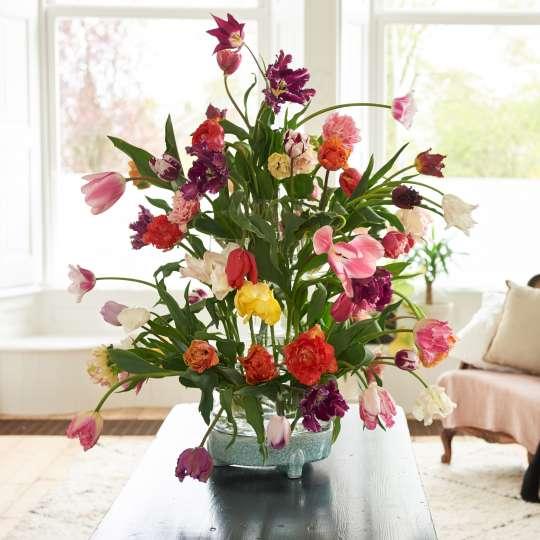 Imposantes Bouquet aus Tulpen