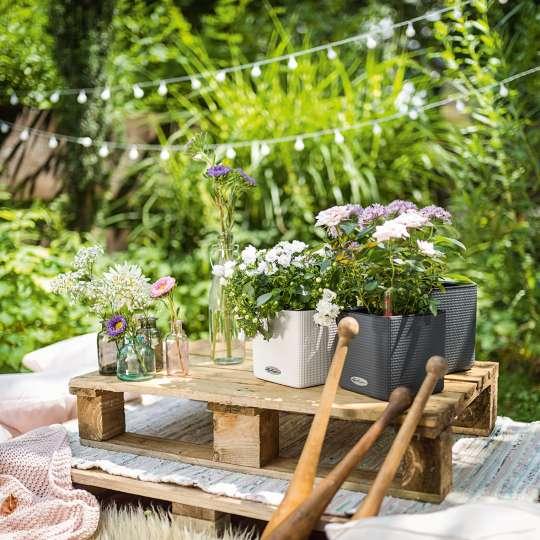 Blumentöpfe CUBE mit Bepflanzung auf Holzpalette