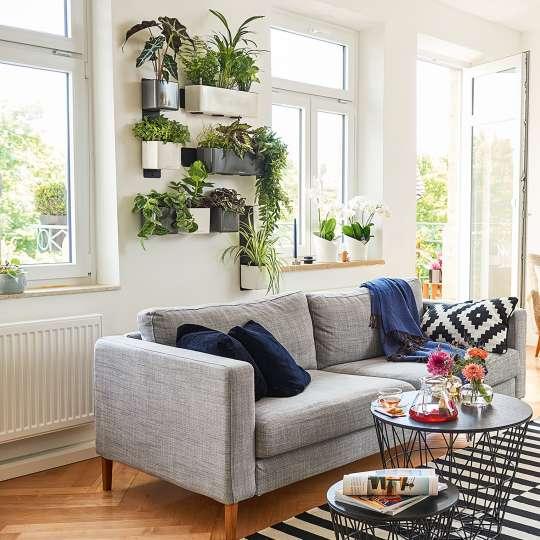 Lechuza: Green up your home! Grün macht glücklich! Cube Glossy Wandmontage / Mood 1
