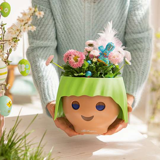OJO bepflanzt mit Frühlingsblüter