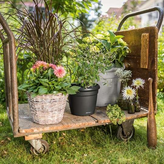Pflanzkübel RUSTICO mit Pflanzen