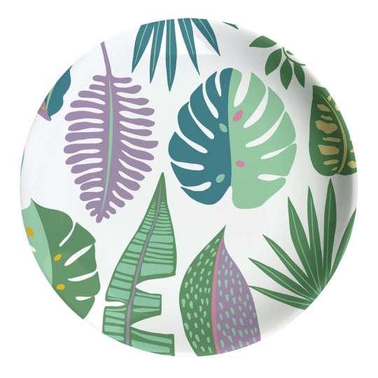Mila Plants Teller