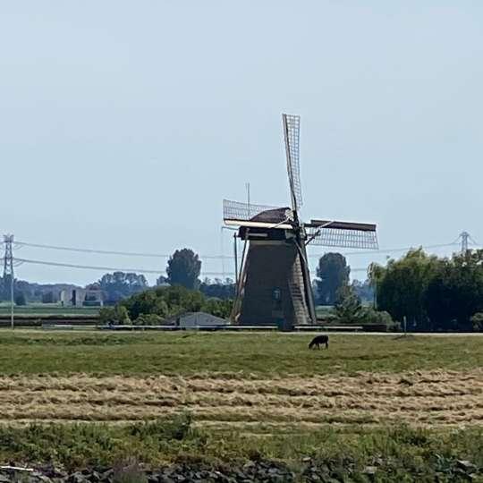 """Unterwegs auf der """"Oude Maas"""""""
