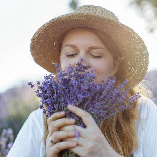 Der Duft der Provence