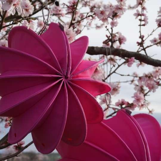Mit frischen neuen Farben begrüßen wir den Frühling