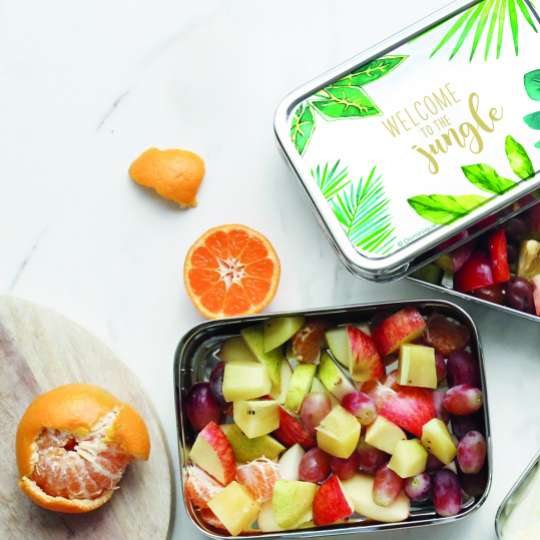 ppd Stainless Steel Lunchbox Jungle