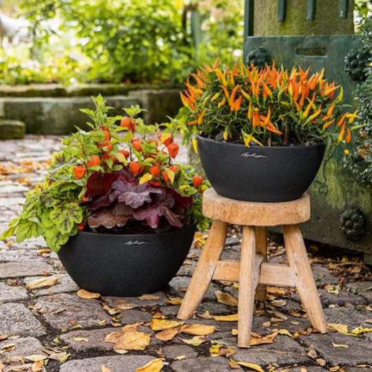 Schaurig-schöne Deko für den Herbstgarten