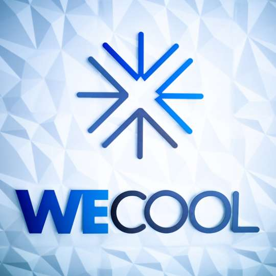 Wecool -Logo